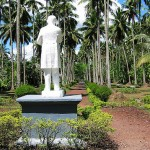 Image for Rizal on agrarian issues